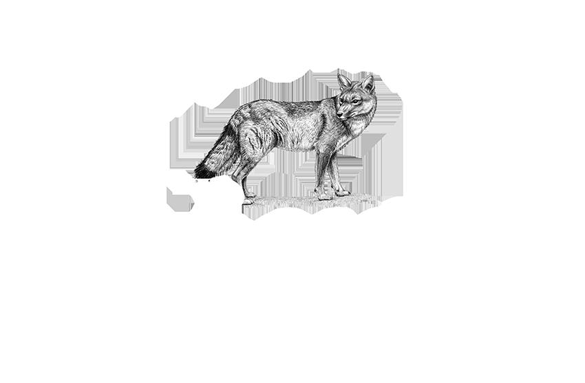 Reserva Frutillar